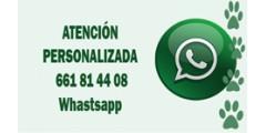 Atención personalizada por whatsapp 661814408